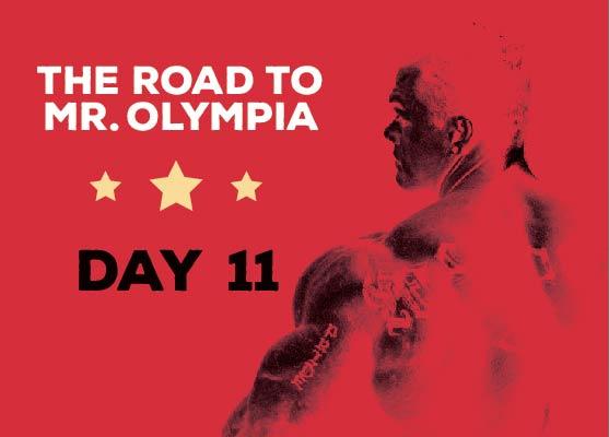 RoadToMrOlympia_Day11