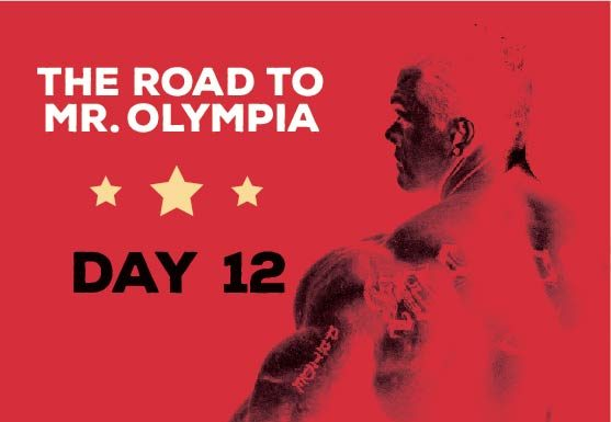 RoadToMrOlympia_Day12