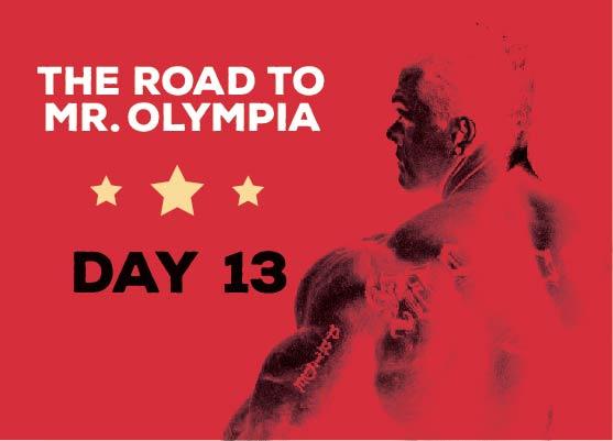 RoadToMrOlympia_Day13