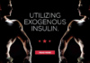 Utilizing Exogenous Insulin